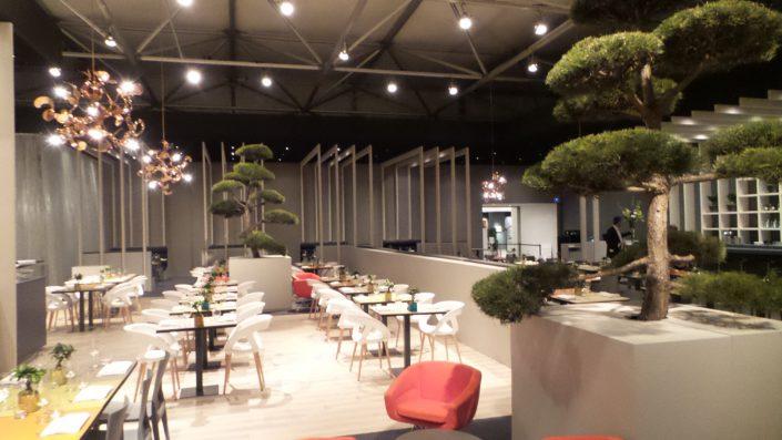 Bonsai planten restaurant TEFAF Maastricht