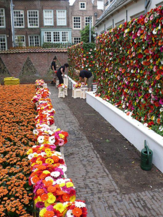 Flora's Hof utrecht muur van gerbera