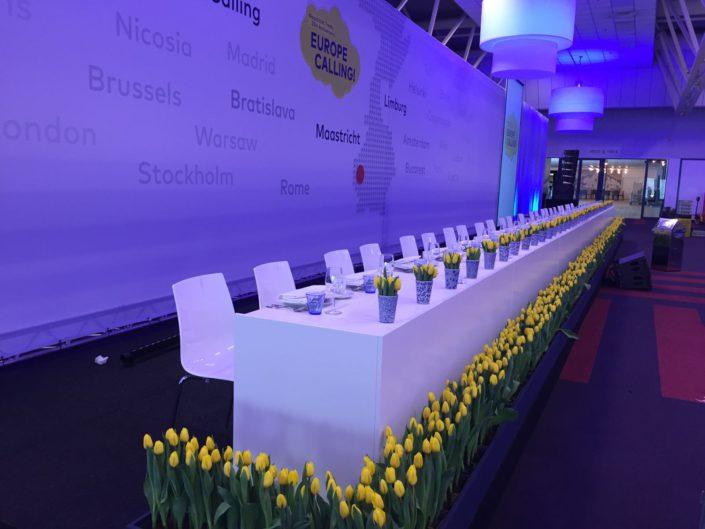 gele tulpen in omkadering Vedrag van Maastricht