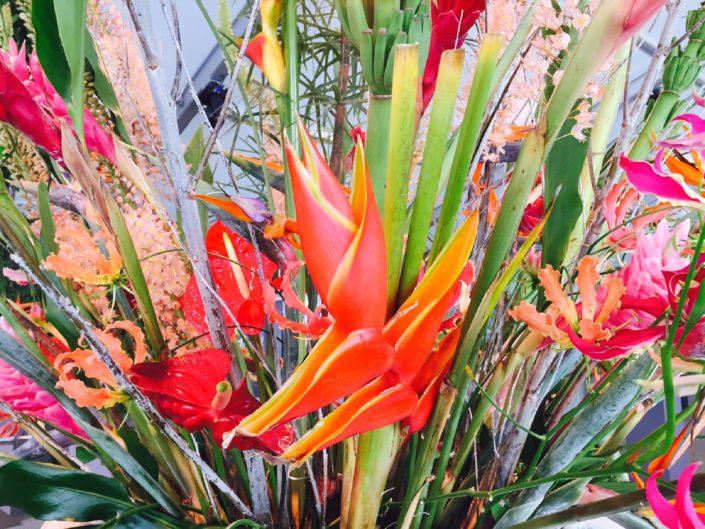kleurrijke tropische bloemen