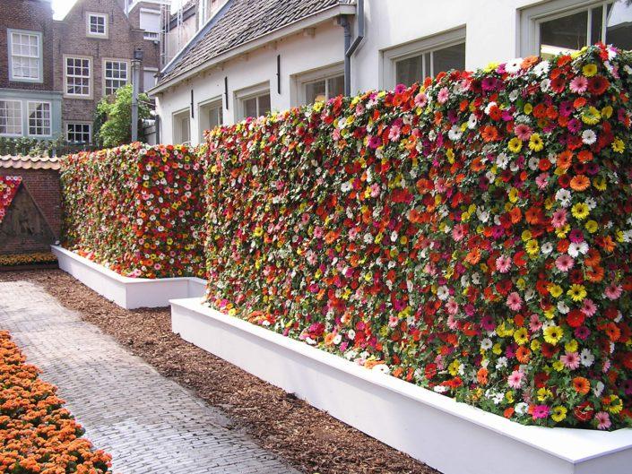 Haag met zomerbloemen